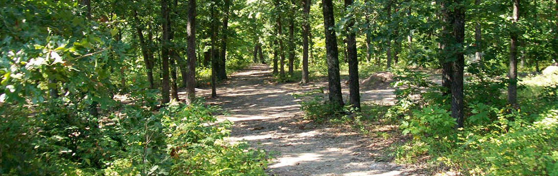 Take a Relaxing Walk On Our Nature Trail